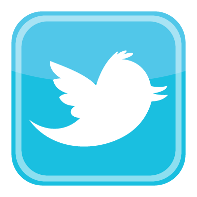 Twitter bird icon vector